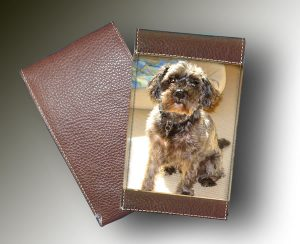 YARDAGE BOOK - SHAGGY DOG
